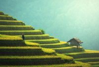 Peluang Bisnis Menguntungkan Dalam Dunіa Agribisnis