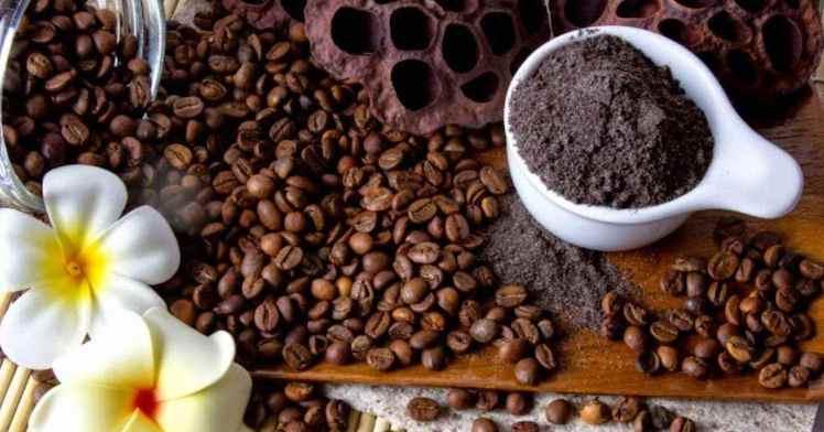 Masalah jerawan, penuaan dini, dan sel kulit mati bisa diatasi dengan kopi